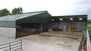 agricultural-building-kilcullen-main-pic