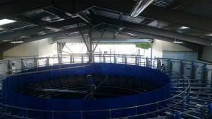 agricultural-milking-parlour-castledermot-2